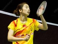 wang-shixian-3070-ssf2012